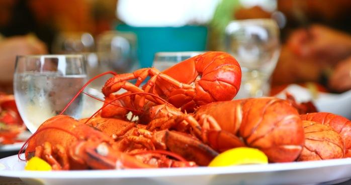 lobster6