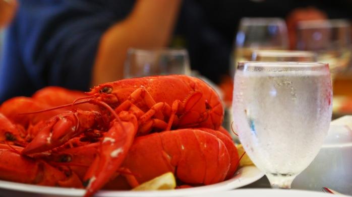 lobster7