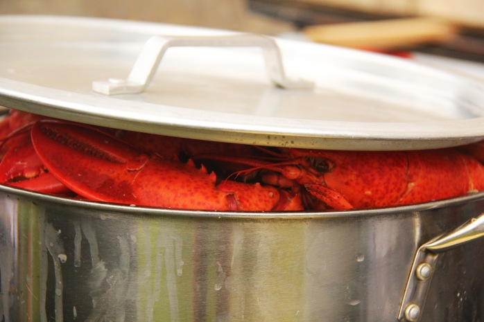 lobsterprep2
